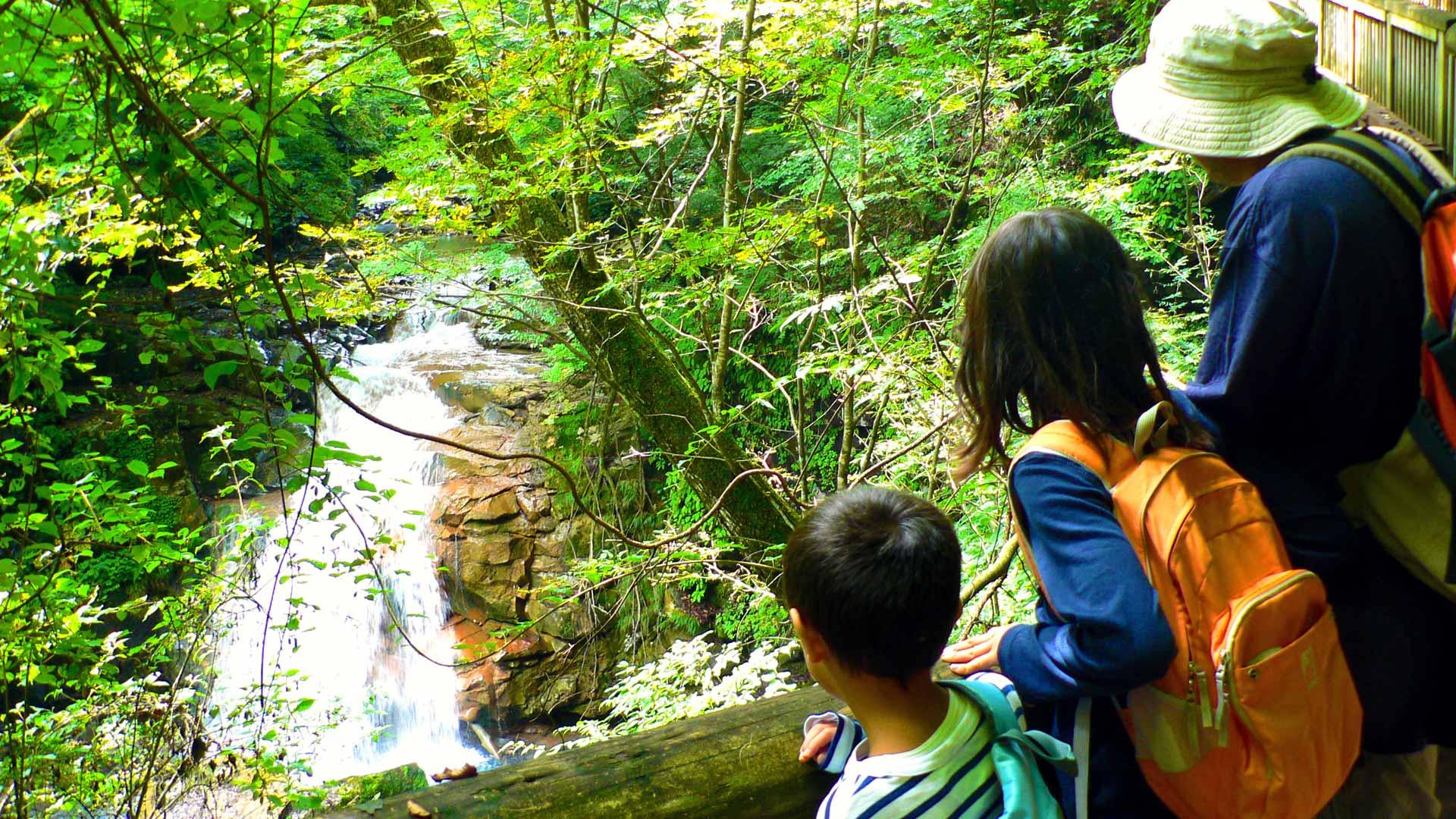 渓流と家族